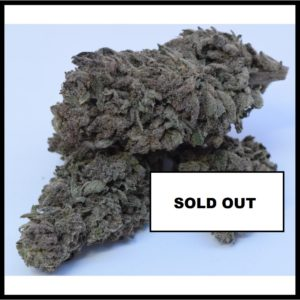 V1 Super Silver Haze 0.2 Greenhouse - Swiss Quality - Below 0.2% THC SOLD OUT - Cannabis - Fleurs - Suisse