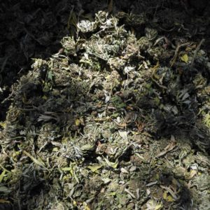 Biomasse / untrimmed flowers - Therapy / Bluedream / Dinamed Mix - Cannabis - Biomasse - Suisse