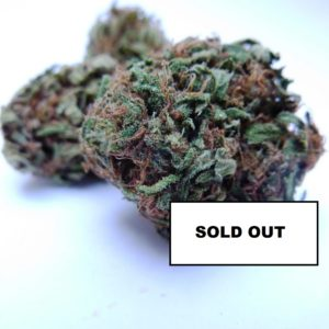 Candy Caramel SOLD OUT  - Cannabis - Fleurs - Italie
