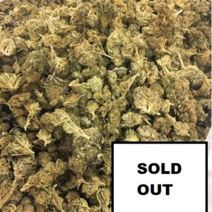 V1 Outdoor <0.2 (Swiss made) SOLD OUT - Cannabis - Fleurs - Suisse