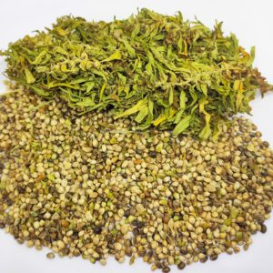 ORGANIC HEMP SEEDS - NOT CLEANED - FUTURA 75 - 2019 Harvest - Cannabis - Seeds - Greece