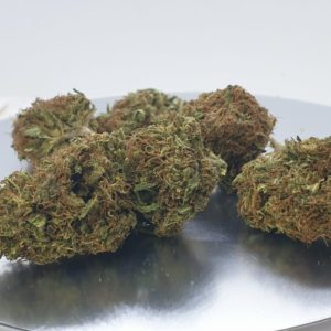 THERAPY OUTDOOR CBD - Cannabis - Flowers - Spain