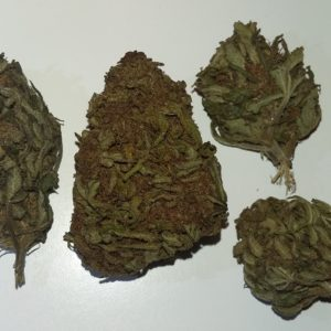 Fenomed (cannatonic selection) Outdoor Flowers - Cannabis - Flowers - Switzerland